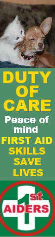 cat and and dog first aid courses