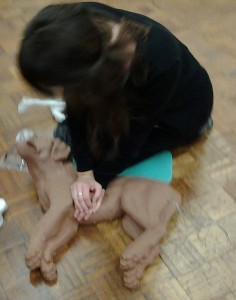 cnine first aid courses st.albans