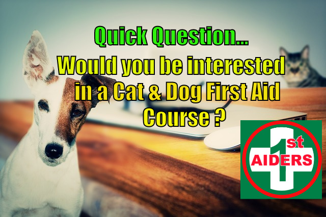 Cat & Dog First Aid Courses
