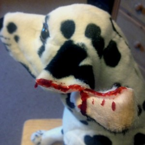 Dog first aid courses - ear ripped