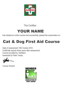 Online cat and dog fitst aid course