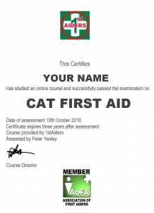 online cat first aid qualification