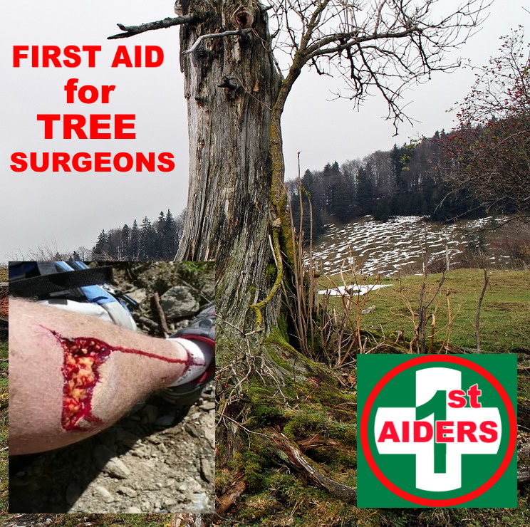 first aid tree surgeons