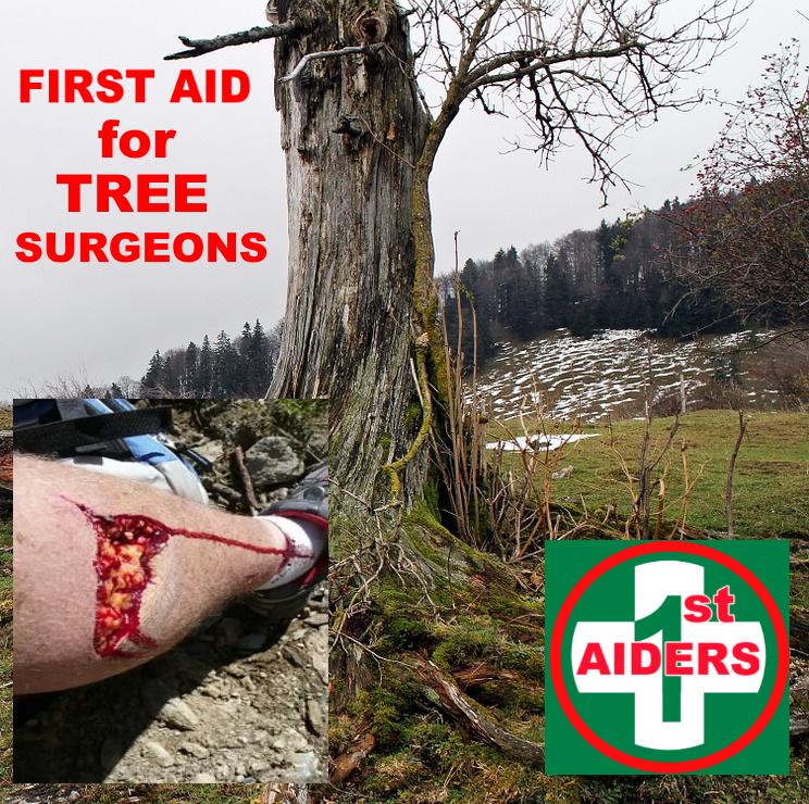 first aid tree surgeons